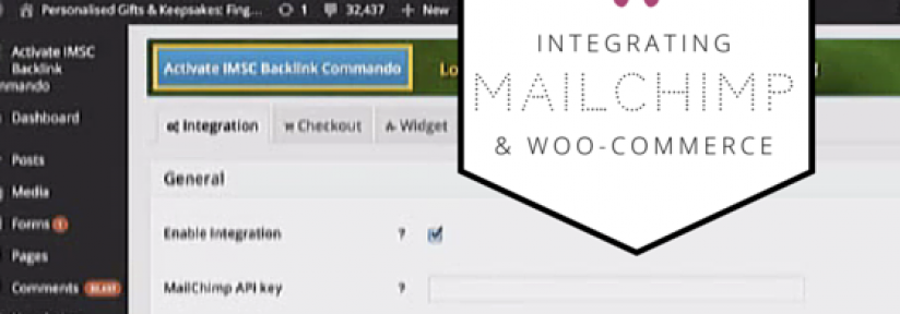 Integrating Woo-commerce and Mailchimp